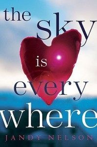 BOOK REVIEW: The Sky is Everywhere by Jandy Nelson