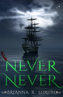 BOOK REVIEW – Never Never by Brianna Shrum