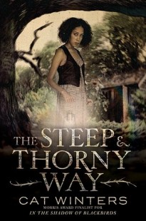 BOOK REVIEW – The Steep and Thorny Way by Cat Winters