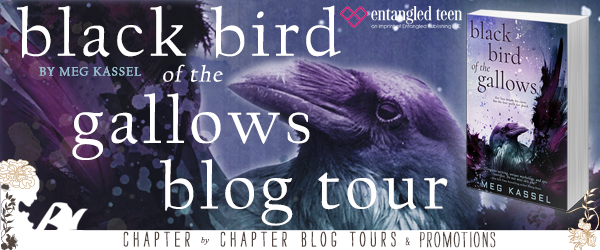 BOOK REVIEW + GIVEAWAY - Black Bird of the Gallows by Meg Kassel