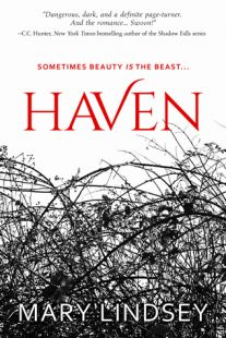 BOOK REVIEW + GIVEAWAY – Haven by Mary Lindsey