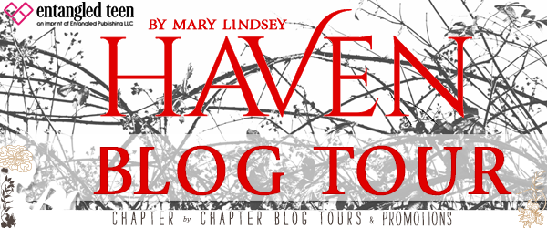 BOOK REVIEW + GIVEAWAY - Haven by Mary Lindsey
