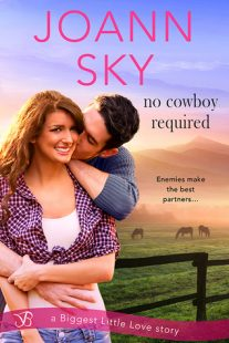 REVIEW – No Cowboy Required by JoAnn Sky