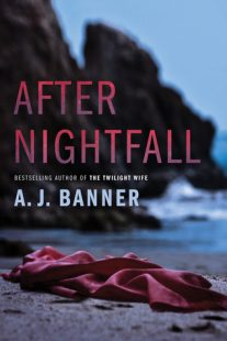 BOOK REVIEW: After Nightfall by A.J. Banner
