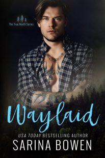 BOOK REVIEW: Waylaid (True North #8) by Sarina Bowen